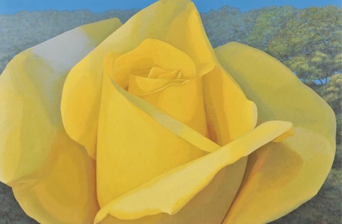 花の杜1905