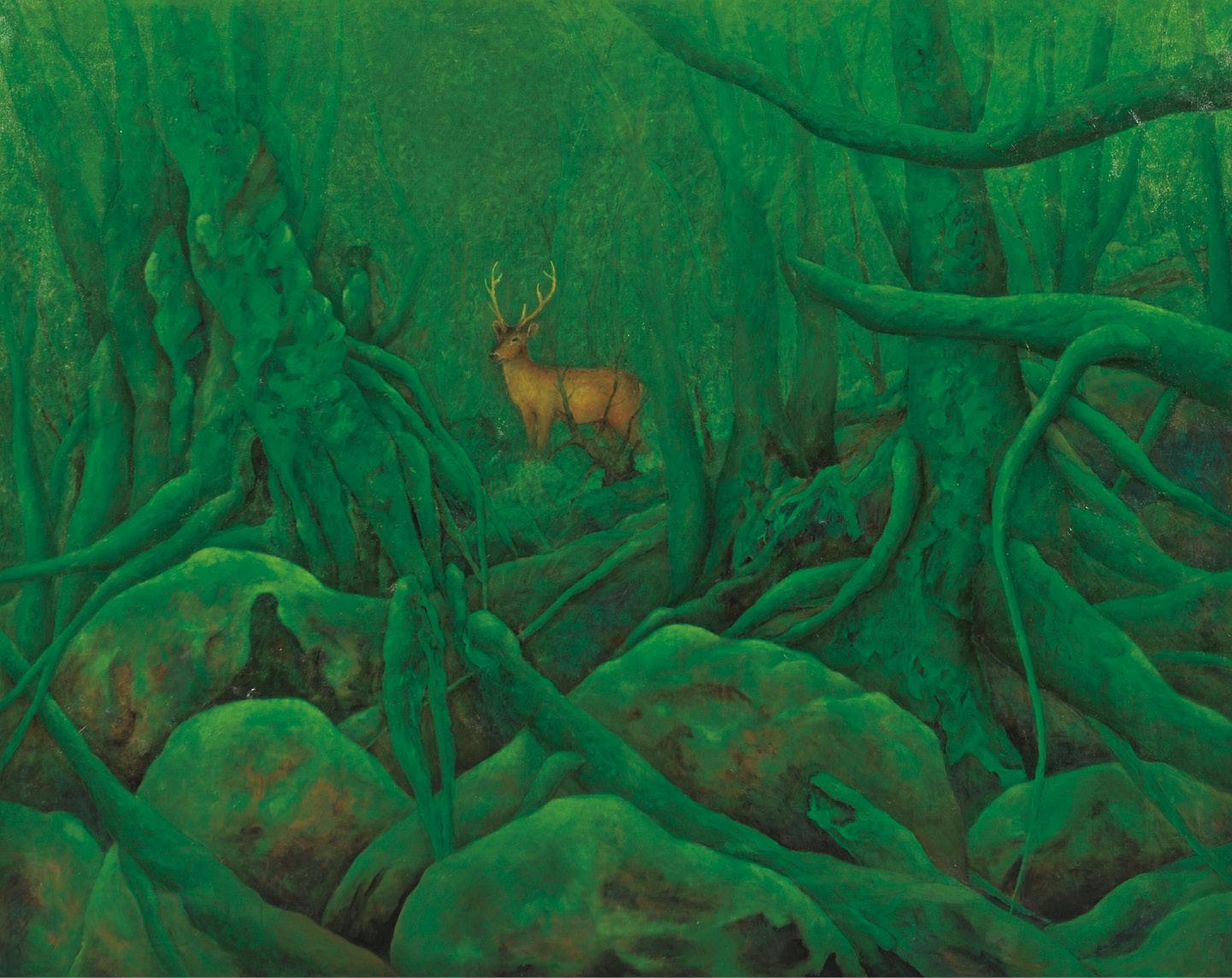 苔の原生林